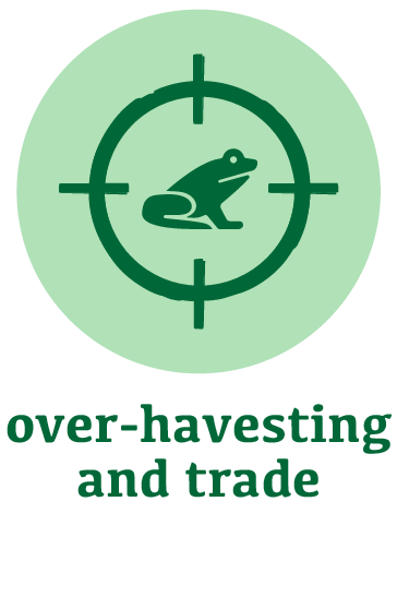 over-harvesting and trade